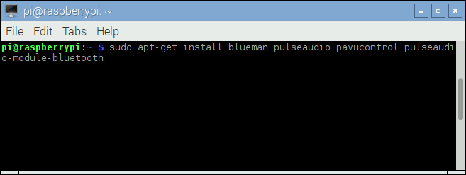 Issuing the command into Raspberry Pi's terminal