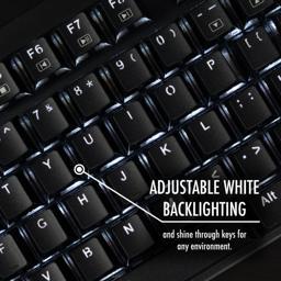 Thumbnail of adjustible white backlighting